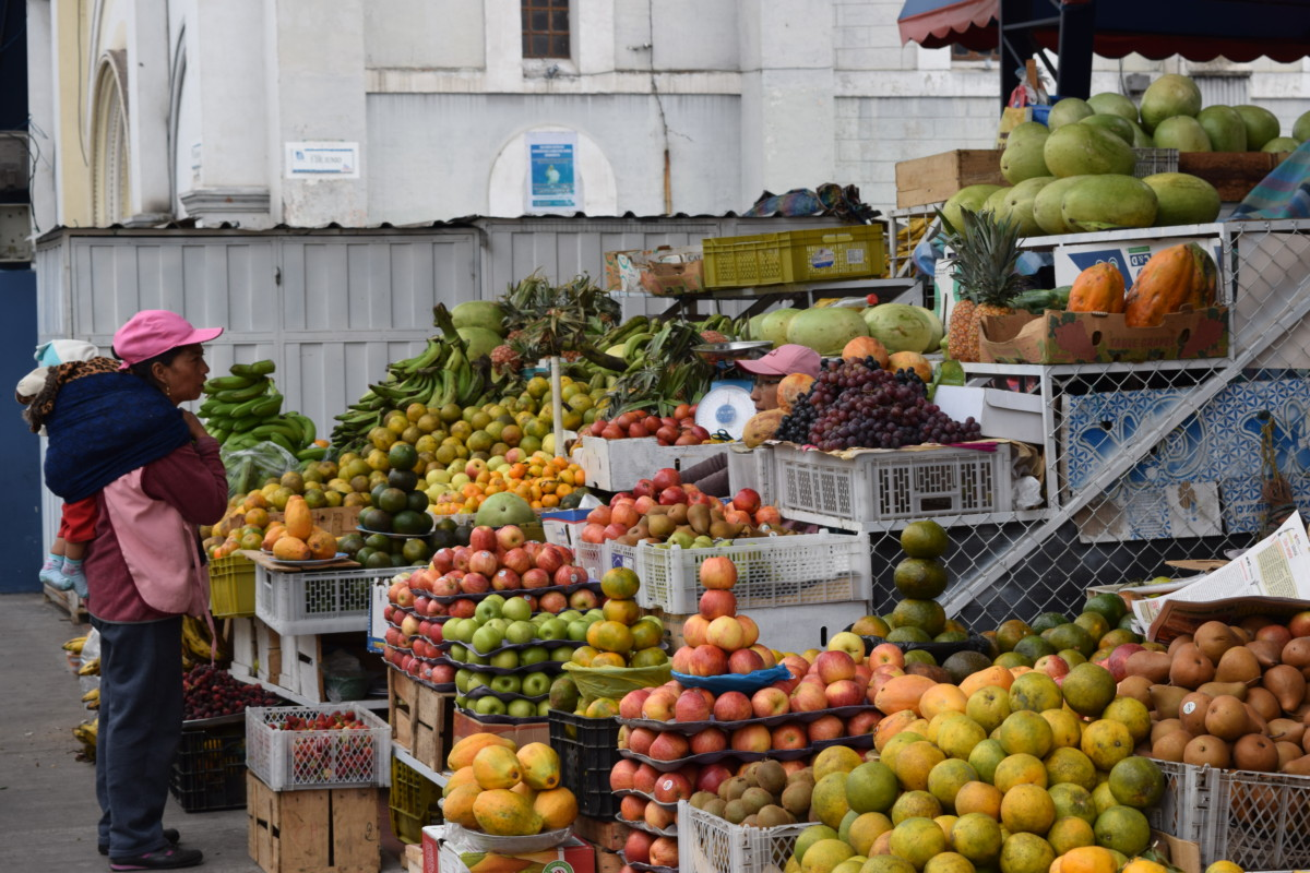 The Economics of Ecuador
