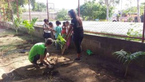 Blog - day 13 (tree planting) (small)