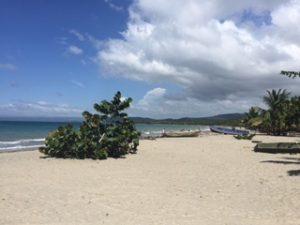 beach day MOCA